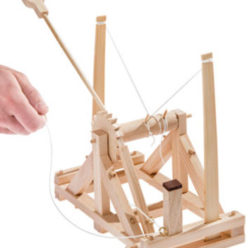 Da Vinci's Catapult: Build a wooden desktop siege engine.