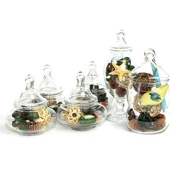 Apothecary Jars, Mixed Lot Instant Collection (Set of 6) - Elegant Decorative Storage, Wedding Accent or Terrarium - Vintage Home Decor