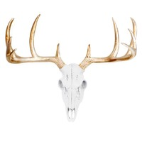 Mini Deer Head Skull | Faux Taxidermy | White + Gold Antlers Resin