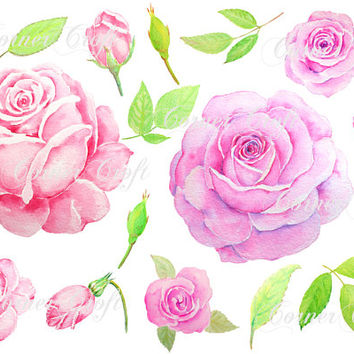 Digital watercolor pink and purple rose clipart printable instant download scrapbook watercolor for greeting cards wedding invitations