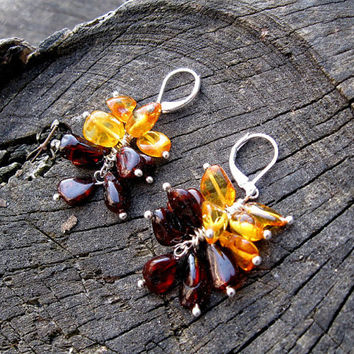 Yellow Brown Amber Cluster Earrings, Multi color Baltic Amber jewelry, unique earrings, Honey Drop dangle earrings, natural organic jewelry