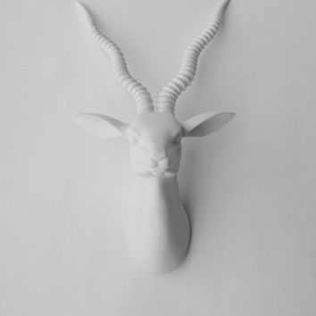 White Faux Taxidermy - The Aldo - Curly Spiral Horned Gazelle Head - Blackbuck Antelope Faux Taxidermy - Chic & Trendy