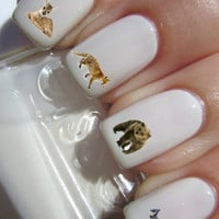 Wild Animal Nail Decals 46 per purchace