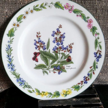 Royal Worcester Vintage Salad Plate Sage Salvia Officinalis Herbs (Green Butterfly Trim) by Royal Worcester