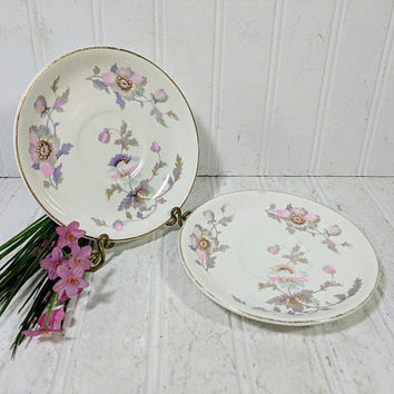 Replacement Saucers Set of 2 in Pink & Purple Poppies Pattern with Gold Trim Marked National Ivory 2 Shabby Chic Tea Cup Plates Saucers Set