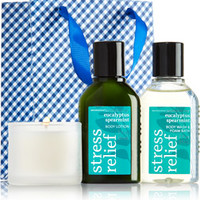 "Little Luxuries Gift Kit <a href=""http://m.bathandbodyworks.com/product/index.jsp?productId=49674506&cm_vc=200&"" data-params="""">Stress Relief - Eucalyptus Spearmint</a>"
