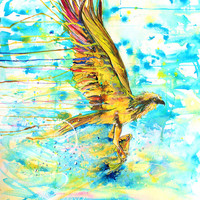 Osprey w/Fish-Giclee by Jen Callahan Canvas Wrap