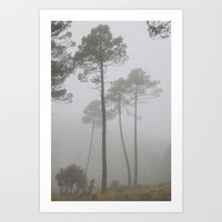 """Wind traces"". Forest dreams Art Print by Guido Montañés"