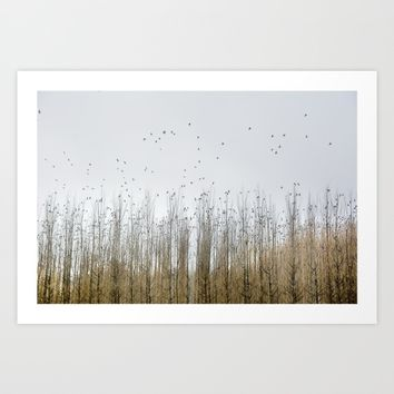Wild Birds Flying. Foggy Sunrise Art Print by Guido Montañés