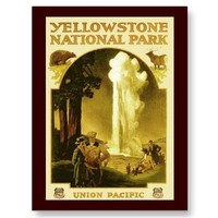 Union Pacific, Yellowstone National Park Postcard from Zazzle.com