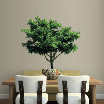 Full Color Wall Decal Mural Sticker Bedroom Living Room Poster Decor Art Tree Foliage (col637)