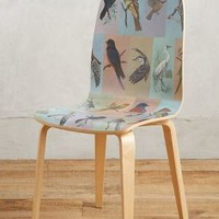 Avian Tamsin Dining Chair by Anthropologie in Multi Motif Size: One Size Furniture