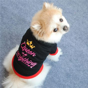 Queen of Everything Cute Small Dog Sweater