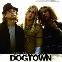 Lords of Dogtown (French) 11x14 Movie Poster (2005)