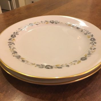 Set of 2 - Hutschenreuther 9700 PASCO Bavaria Germany Replacement Salad Plates