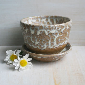 Small Flower Pot and Water Dish - Rustic Planter and Saucer Handmade Ceramic Flowerpot Earthy Ocher and White Glaze Made in USA