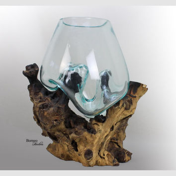 Hand-Blown Molten Glass On Driftwood Base; Sculpted Terrarium/Vase/Fish Bowl Indoor Planter Eco Tillandsia Aerium Unique Wood Root 12.25x11""