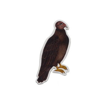 Turkey Vulture Bird Magnet