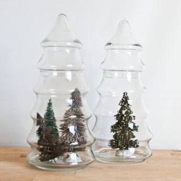 Instant Collection of Tree Shape Apothecary Jars (Set of 2), Glass Project Containers, 11 inch