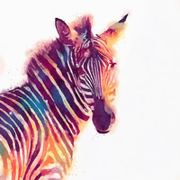 The Aesthetic - Zebra Art Print by Jacqueline Maldonado | Society6