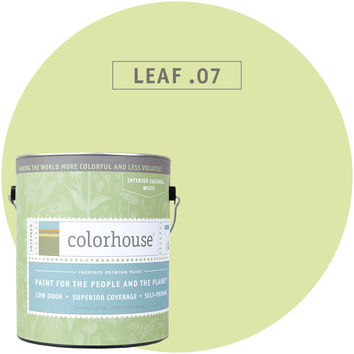 Paint by Colorhouse LEAF .07