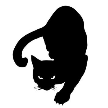 12*16CM PET CAT Car Sticker Decal Black/Silver