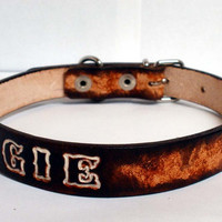 "Personalized dog collar, 3/4"" wide, single buckle, leather dog collar, brown dog collar"