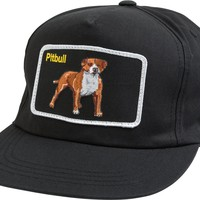 DOG LIMITED PITBULL SNAPBACK HAT