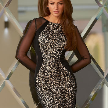 Black Mesh Long Sleeve Bodycon Lace Dress