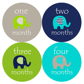 Baby Boy Monthly Milestone Stickers Style #151