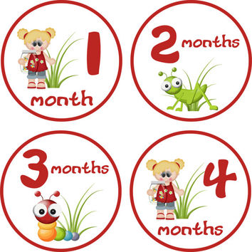 Baby Girl Month Stickers Baby Monthly Stickers Girl Monthly Shirt Stickers Bugs Red Baby Shower Gift Photo Prop Baby Milestone