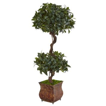 Artificial Silk Tree -4.5 Ft Sweet Bay Double Topiary Tree In Metal Planter