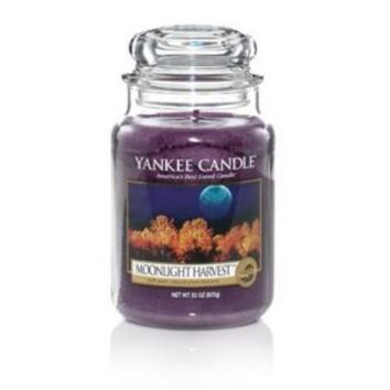 Yankee Candle 22oz Moonlight Harvest