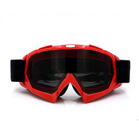 Adult Colourful double Lens Snow Ski Snowboard Goggles Motocross Anti-Fog Fashion Eye Protection Red Tea