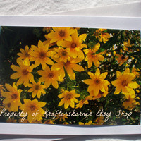 New Style! Photo Card Yellow Flowers 5 x 7 With Envelope