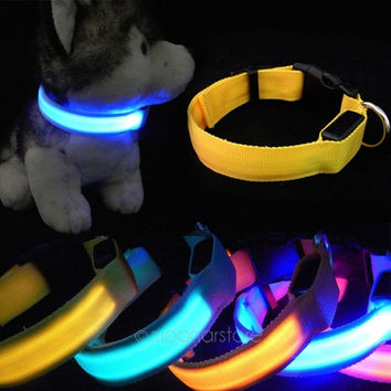2014 NEW Fashion Adjustable Dog Cat Puppy Pet LED Neck Strap Flashing Collar Light Safety = 1929846212