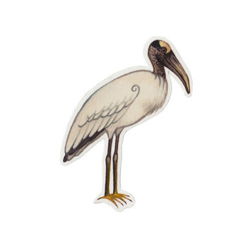 Wood Stork Bird Magnet