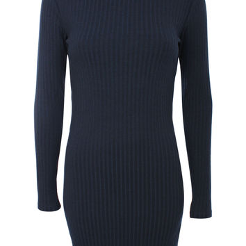 Allie Long Sleeve Turtle Neck Ribbed Bodycon Dress in Navy Blue