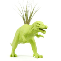 Lime Green Dinosaur planter, T-Rex with air plant