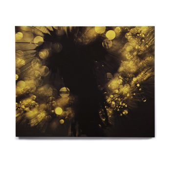 "Ingrid Beddoes ""Moonlight Dandelion"" Birchwood Wall Art"