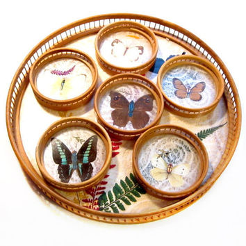 Vintage Butterfly Tray Coaster Set, Bamboo, Glass