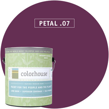 Paint by Colorhouse PETAL .07