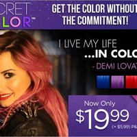 Secret Color - Demi Lovato-Inspired Colored Hair Extensions!