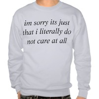 big dont care pullover sweatshirt
