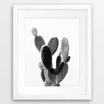 Cactus Photo Printable File, Cactus Landscape Black And White - Modern Wall Art, Home Office Decor Digital Print Instant Download Art