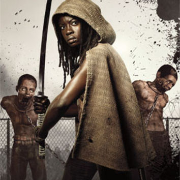 The Walking Dead - Michonne TV Show Poster 22x34 RP13566