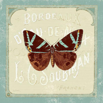 Parisian Butterfly II Art Print Poster by Sue Schlabach