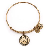 Alex and Ani Taurus Charm Bangle Bracelet - Rafaelian Gold Finish