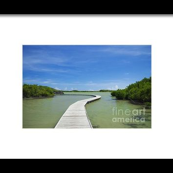 Road On Lake Framed Print By Konstantin Sevostyanov
