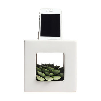 Terrariums iBloom iPhone and Android phone dock station and planter terrarium